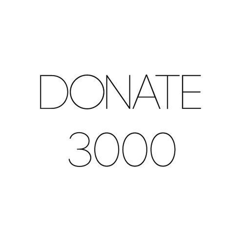 DONATION 3000
