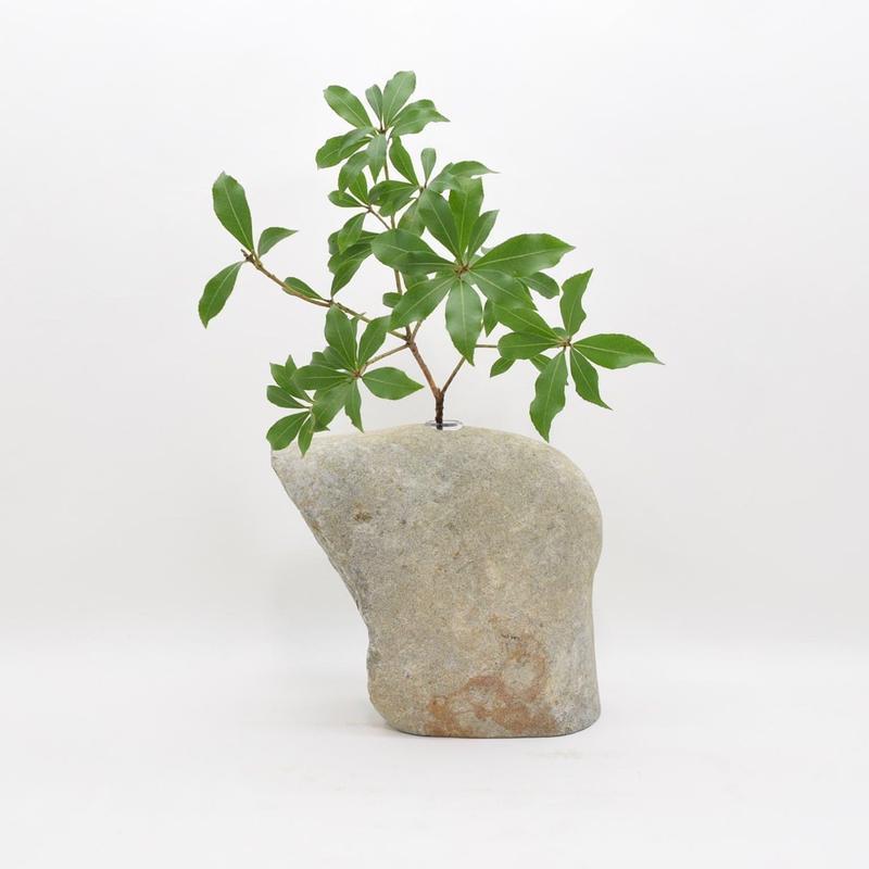 Real Stone Vase 005