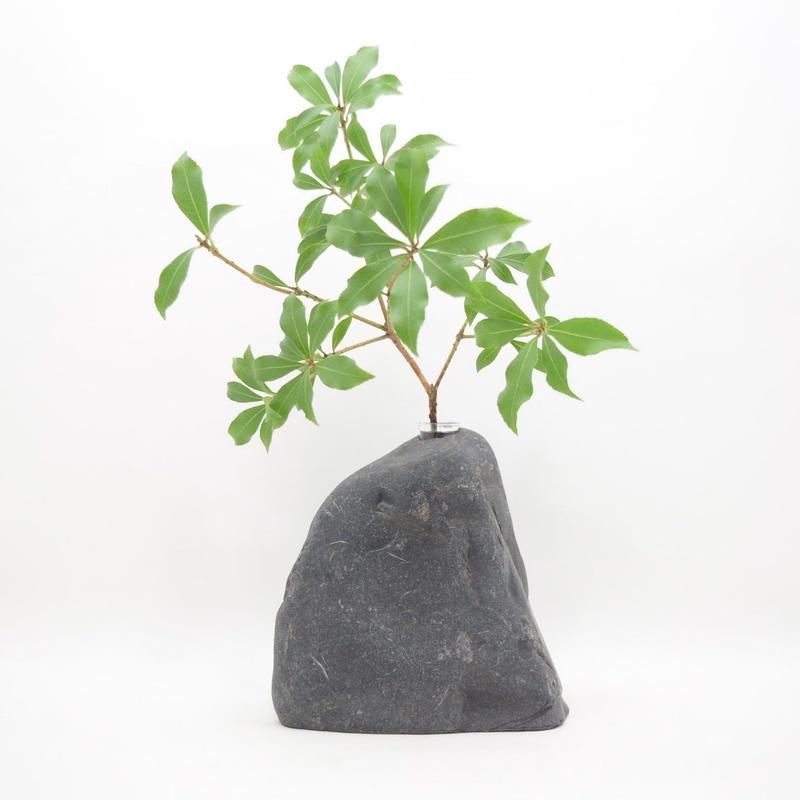Real Stone Vase 020