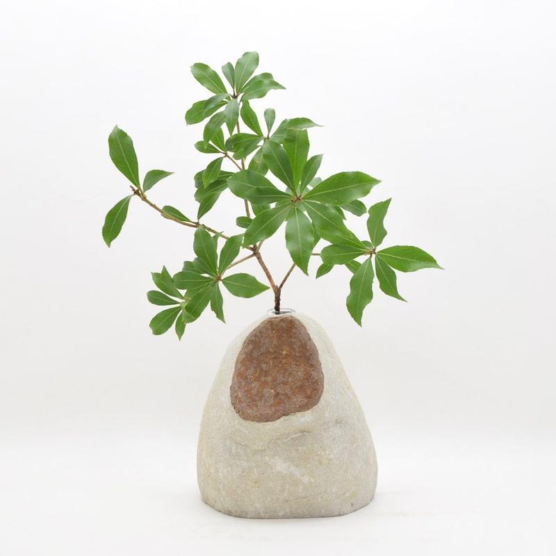 Real Stone Vase 012