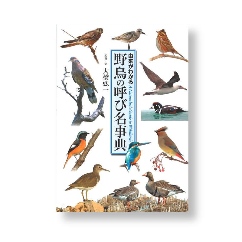 野鳥の呼び名事典