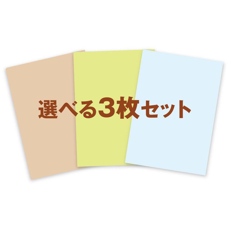 大橋弘一野鳥クリアファイル【選べる3枚セット】