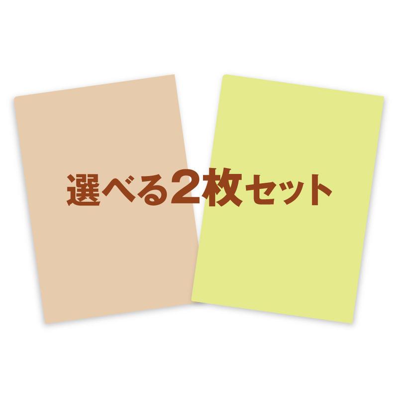 大橋弘一野鳥クリアファイル【選べる2枚セット】