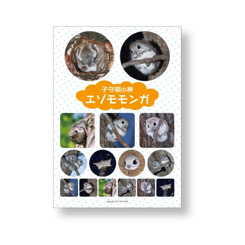オリジナル写真シール【エゾモモンガ】