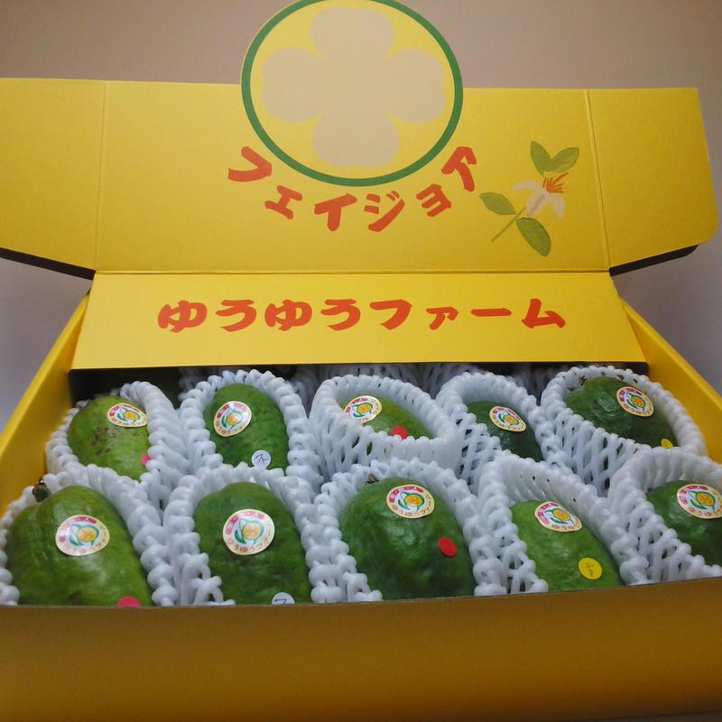 フェイジョア生果実(15個入り)