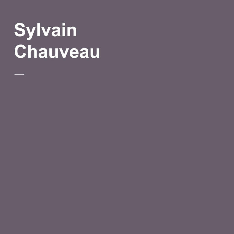 Sylvain Chauveau - Abstractions