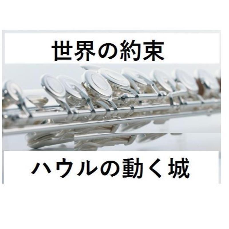 【フルート楽譜】世界の約束~スタジオジブリ「ハウルの動く城」(フルートピアノ伴奏)
