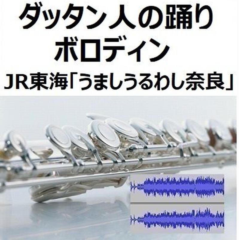 【伴奏音源・参考音源】ダッタン人の踊り~「イーゴリ公」(ボロディン)(フルートピアノ伴奏)JR東海「うましうるわし奈良」
