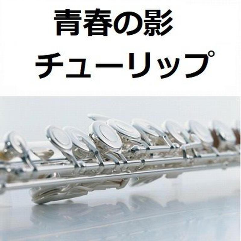【フルート楽譜】青春の影(チューリップ)(フルートピアノ伴奏)