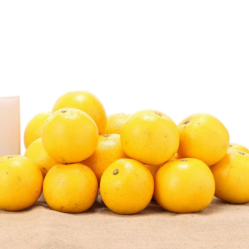 【450-122】グレープフルーツ(マーシュ)(5kg)