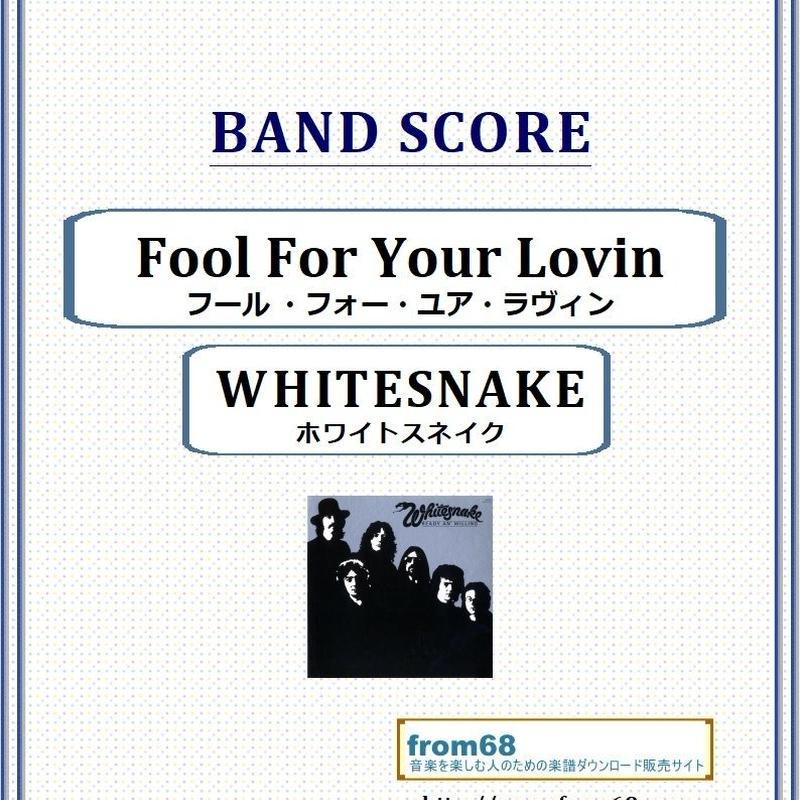 ホワイトスネイク(WHITESNAKE)  / Fool For Your Lovin(フール ・フォー・ユア・ラヴィン) バンド・スコア(TAB譜) 楽譜