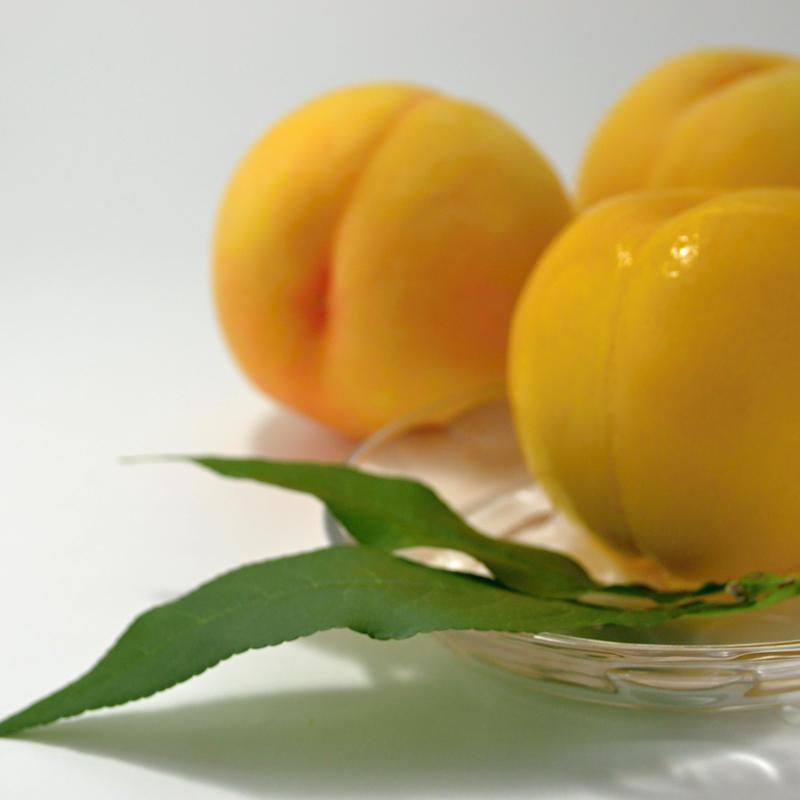 予約受付中【もも】黄金桃(2kg):8月中旬~8月下旬頃発送予定
