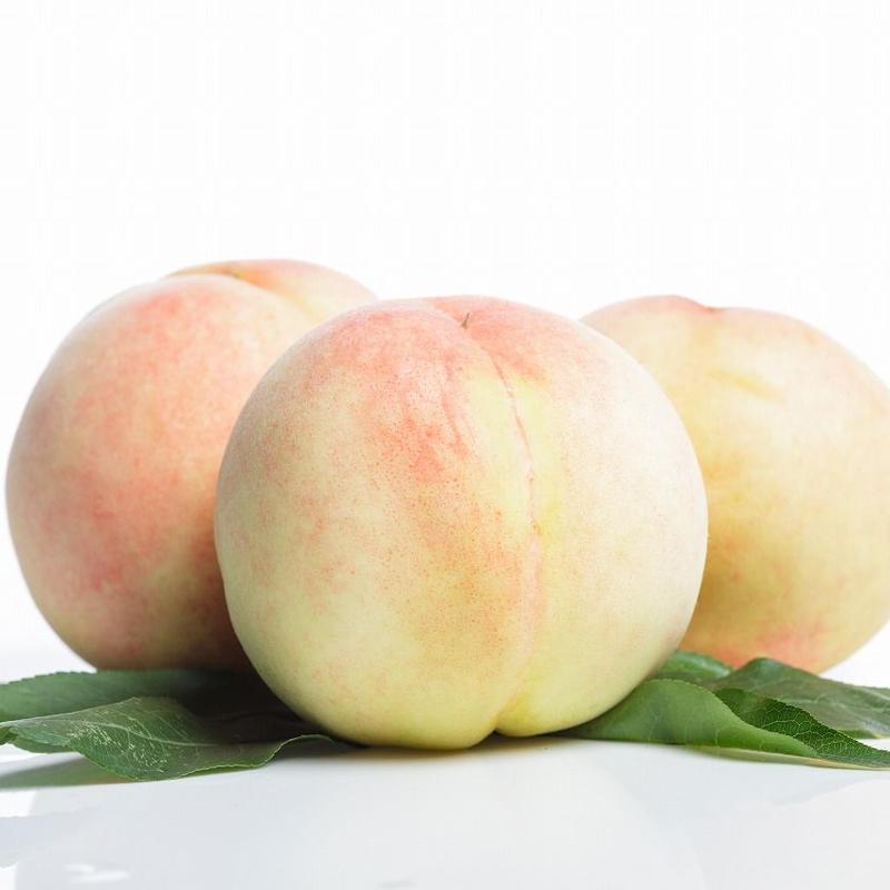 浅間白桃 3kg箱