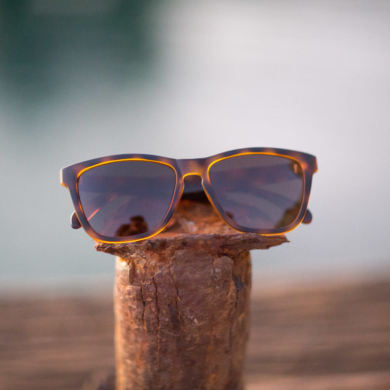 SUNSKI/サンスキー【SUN-MD-BR】メンズ&レディース-Madronas Sunglasses-Tortoise/Brown