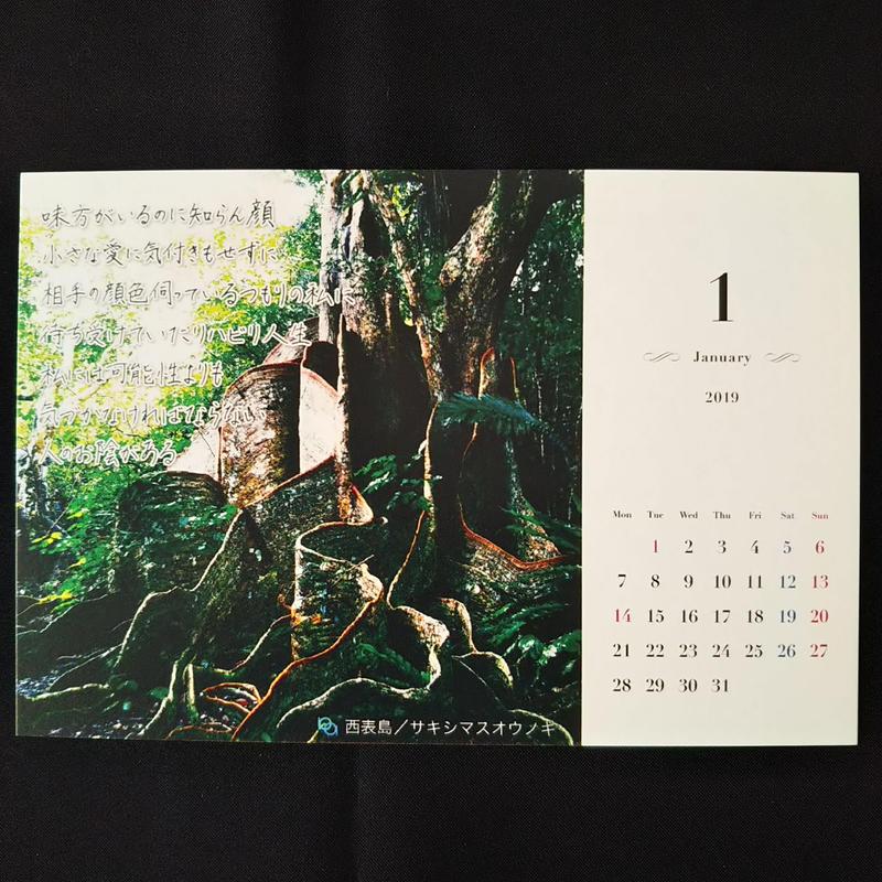 最新作!【天使のカレンダー(石垣島編)】