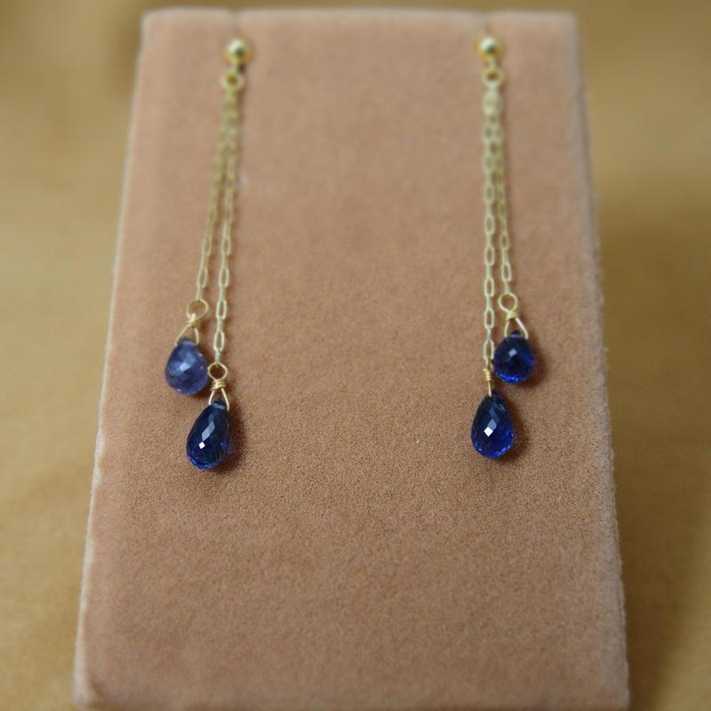 Twin BlueSapphire Design Earrings