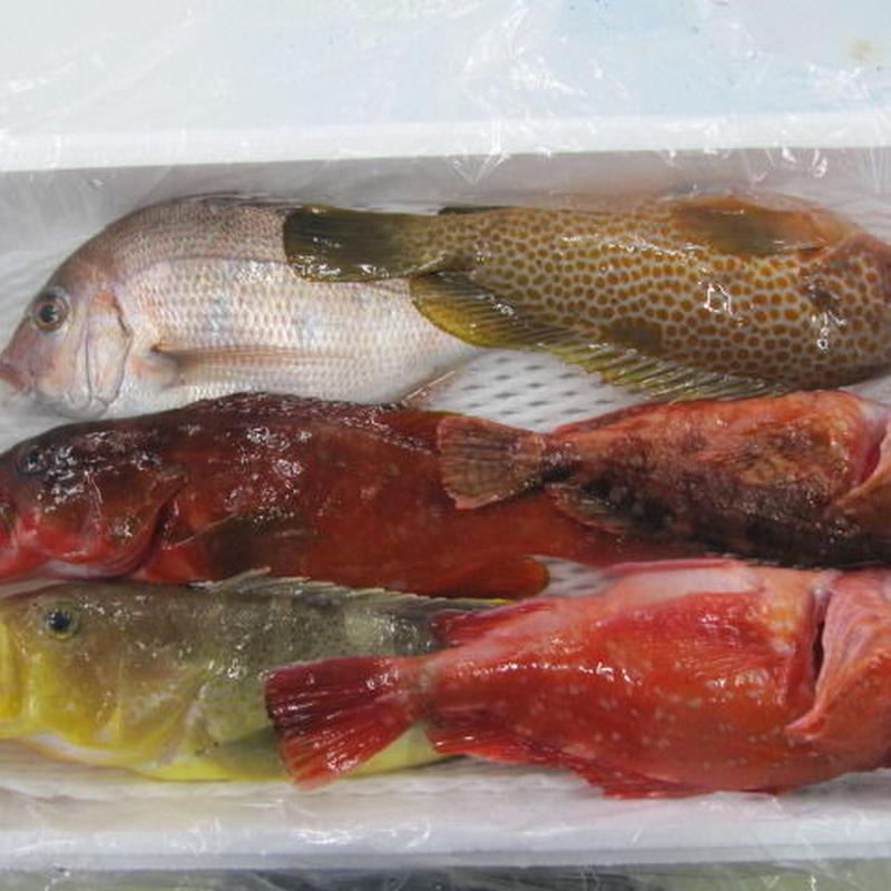 五島列島の鮮魚詰め合わせセット7,000