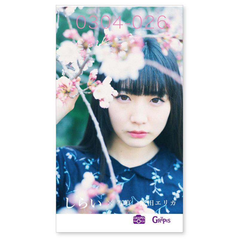 0304-026 しらい×飯田エリカ(トーフ版ミニ写真集)