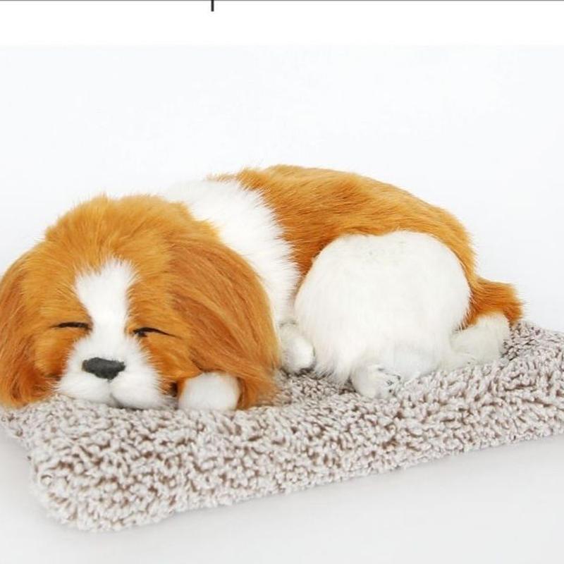 Dream Pets キャバリア キング チャールズ スパニエル 活性炭入り脱臭効果  国内未発売
