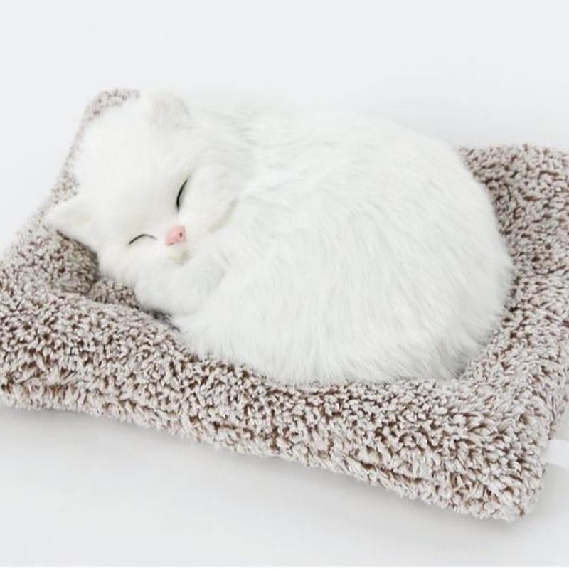 Dream pets ターキッシュ アンゴラ 活性炭入り脱臭効果  国内未発売