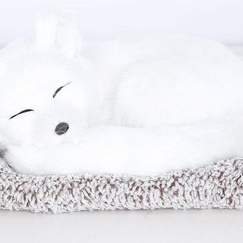 Dream Pets ホワイトフォックス 活性炭入り脱臭効果  国内未発売
