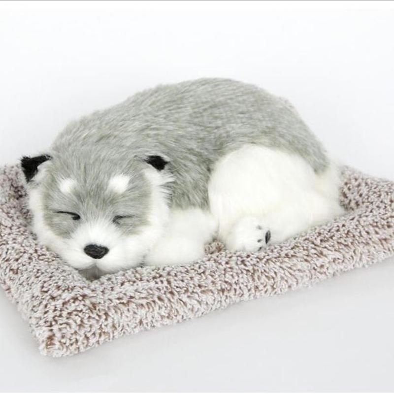 Dream Pets シベリアンハスキー 活性炭入り脱臭効果  国内未発売