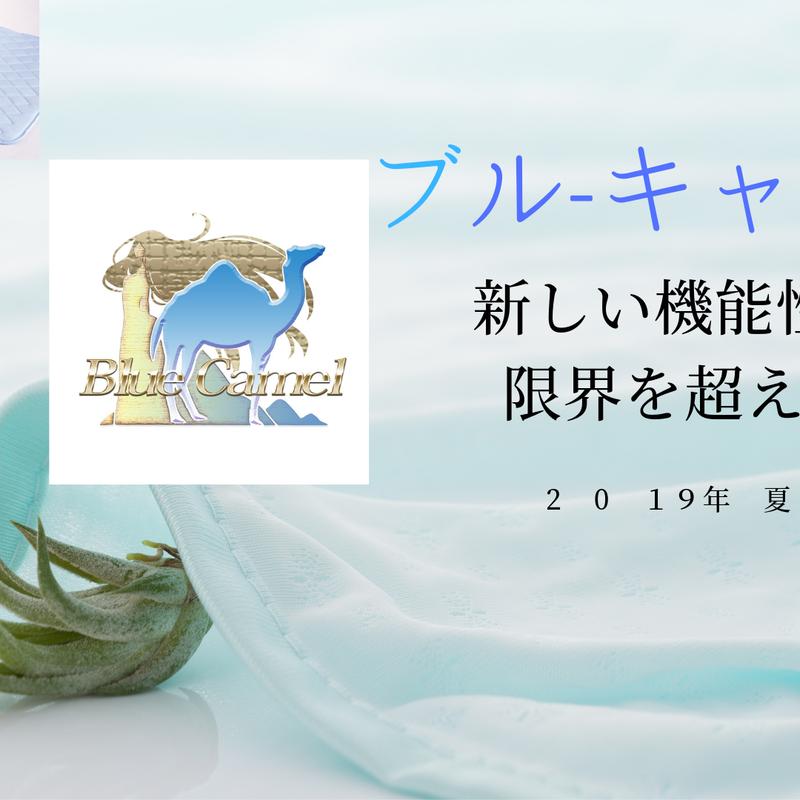 ブルーキャメル  敷きパッド (ダブル 140×205㎝)
