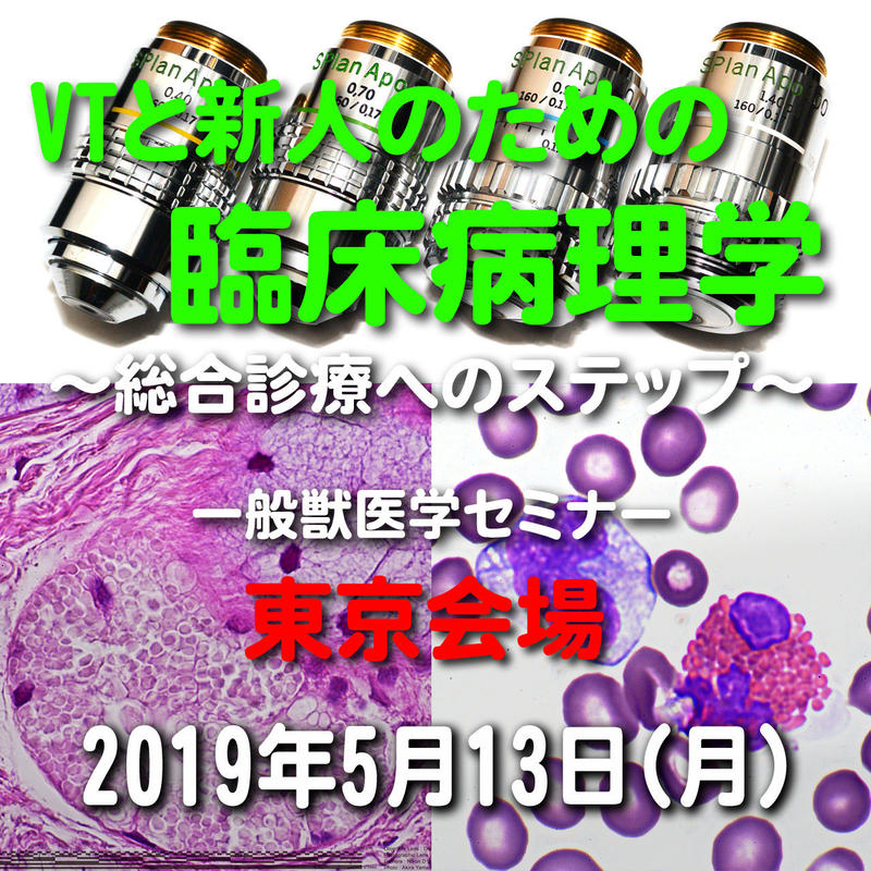VTと新人のための臨床病理学【必要な検査と必要のない検査~結果から何がわかる?】東京:2019年5月13日(月)