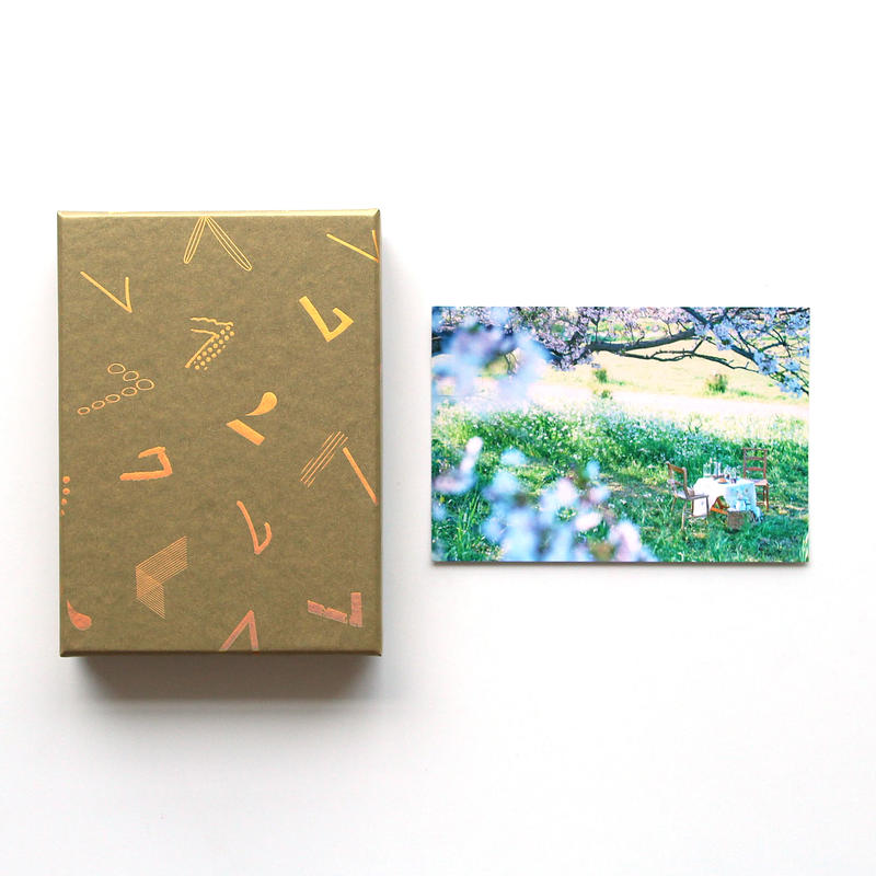 「haconiwa creators 2019」 BOX(インテリアスタイリスト さかのまどかポストカード付)