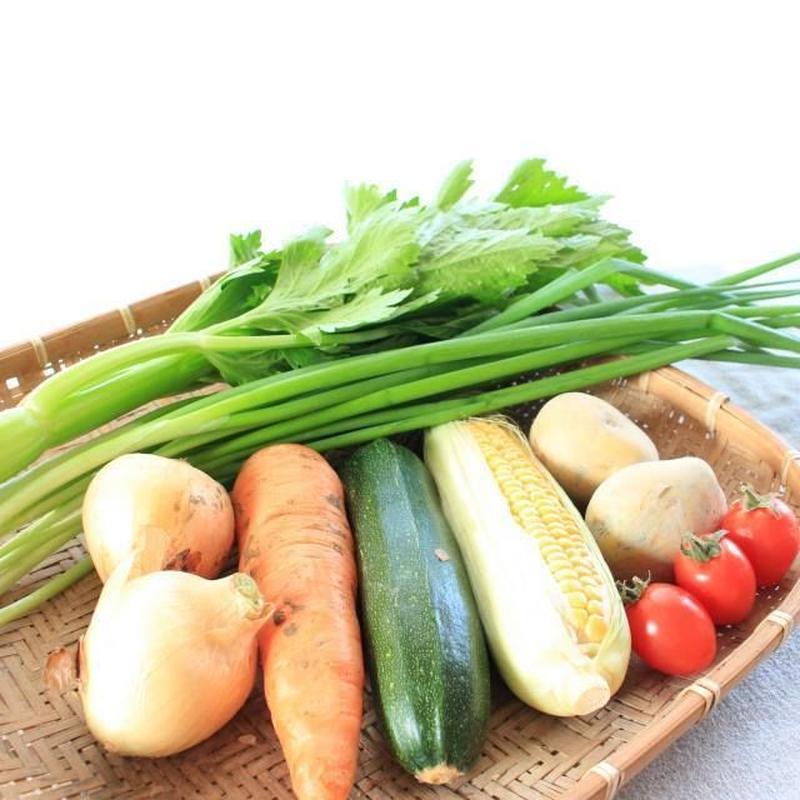 無農薬【沖縄県産】単身お野菜セット