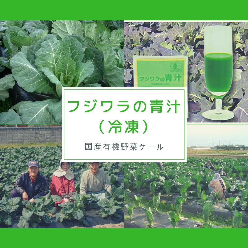 フジワラの青汁(冷凍)90ml×7パック【有機JAS認定】【国産有機野菜ケール青汁】【産直便】