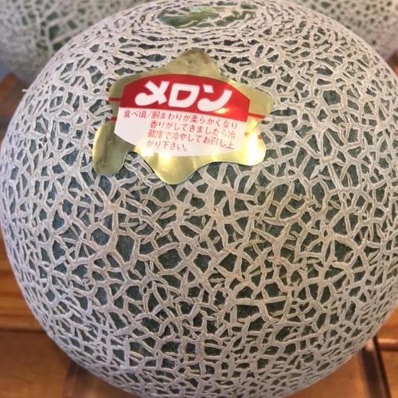 北海道スワン赤肉メロン