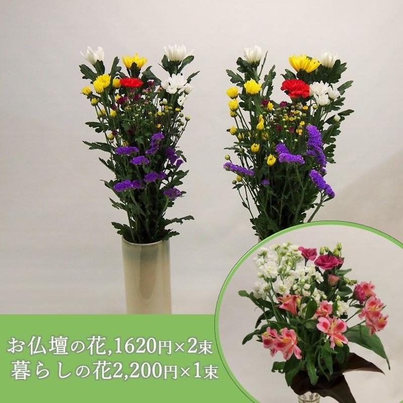 【おまかせ定期便 B+E】お仏壇の花1,620円×2束+暮らしの花2,200円×1束