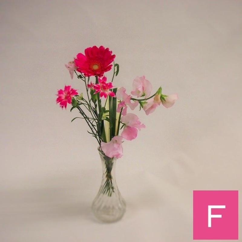 【おまかせ定期便F】暮らしの花mini 550円×1束 ※単品でのご注文の場合3束よりお申込可能です。
