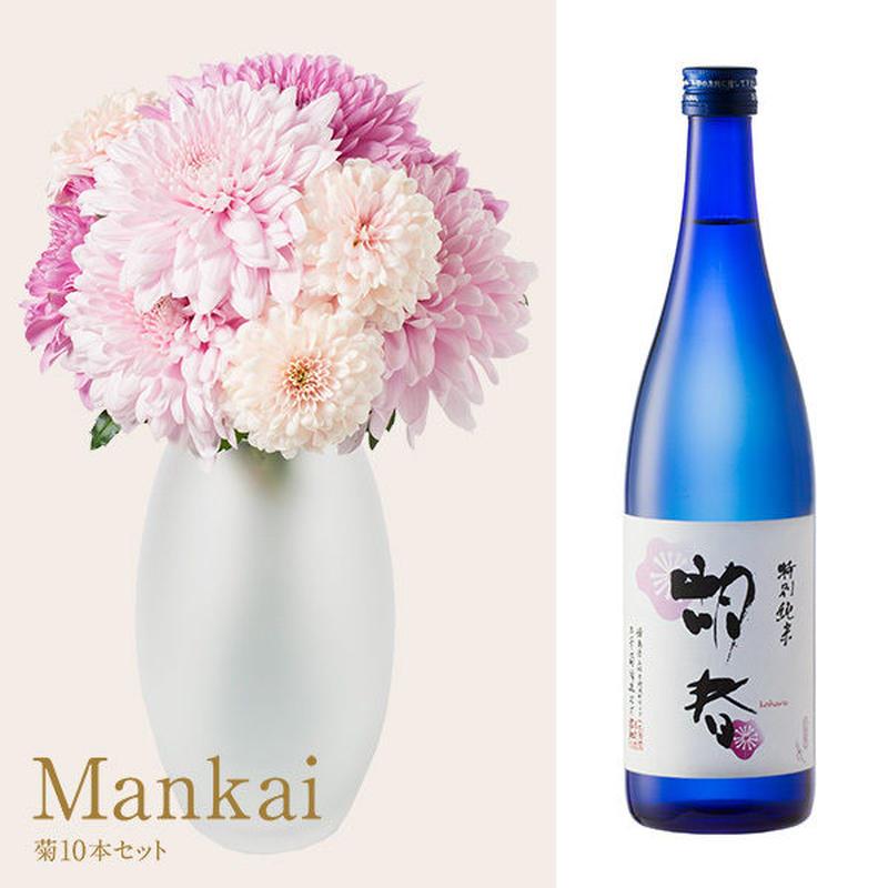 菊と酒 HanaVi -MANKAI-ピンク系×三芳菊【特別純米】