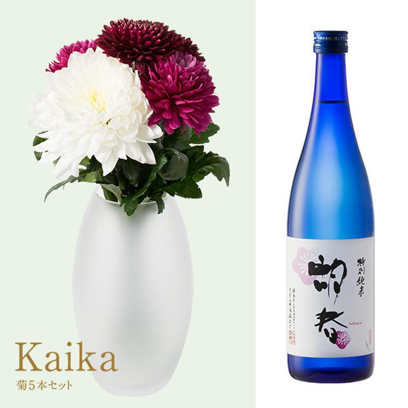 菊と酒 HanaVi -KAIKA-シックレッド系×三芳菊【特別純米】