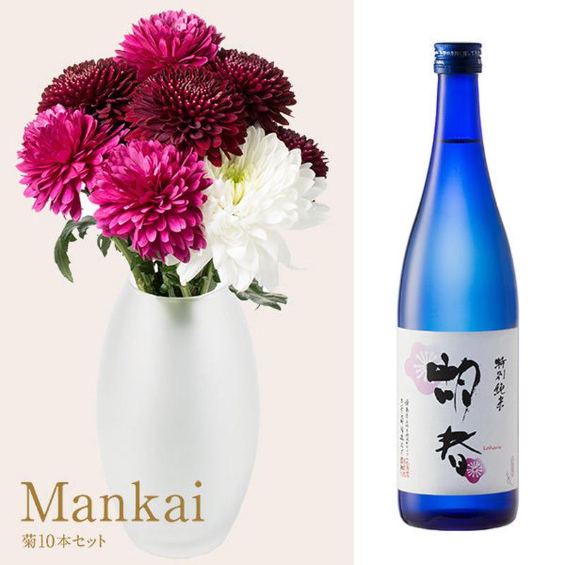 菊と酒 HanaVi -MANKAI-シックレッド系×三芳菊【特別純米】