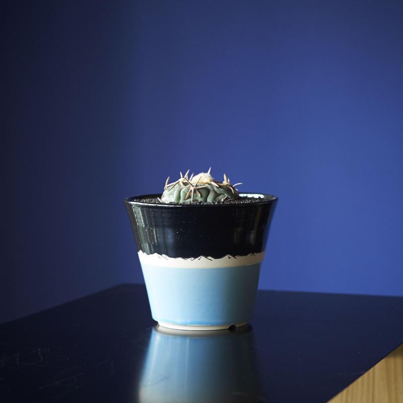 太平丸 × AMETSUCHI pot (M)