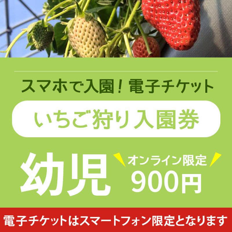 ☆数量限定☆いちご狩り入園券(3月11日~分) 幼児(3歳以上) オンライン購入特典付き