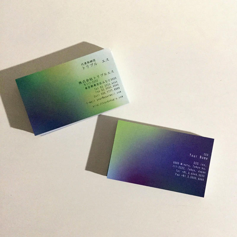 39d1_biz ビジネス名刺  英表記【100枚】
