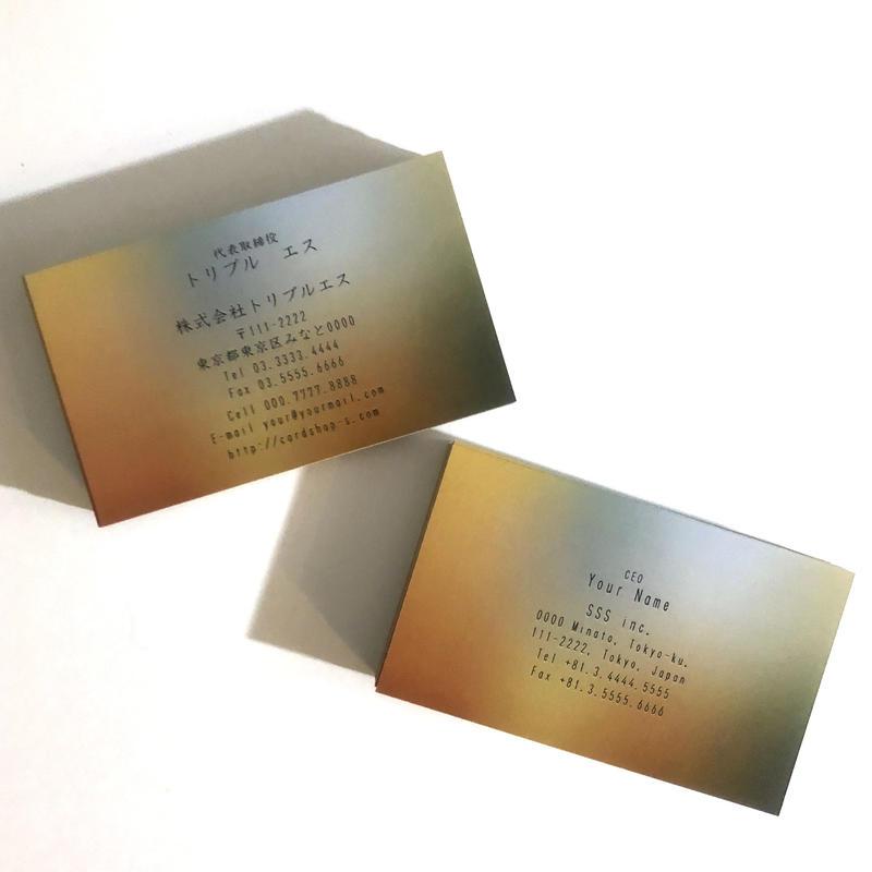 72d1_biz ビジネス名刺  英表記【100枚】
