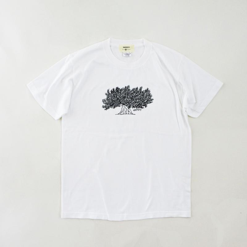 PRINTED T-SH【TREE】 (プリントTee  ツリー柄)  A51908