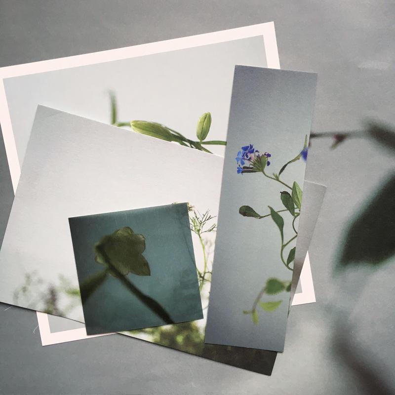 オリジナルカードセット|四季をいつくしむ花と器