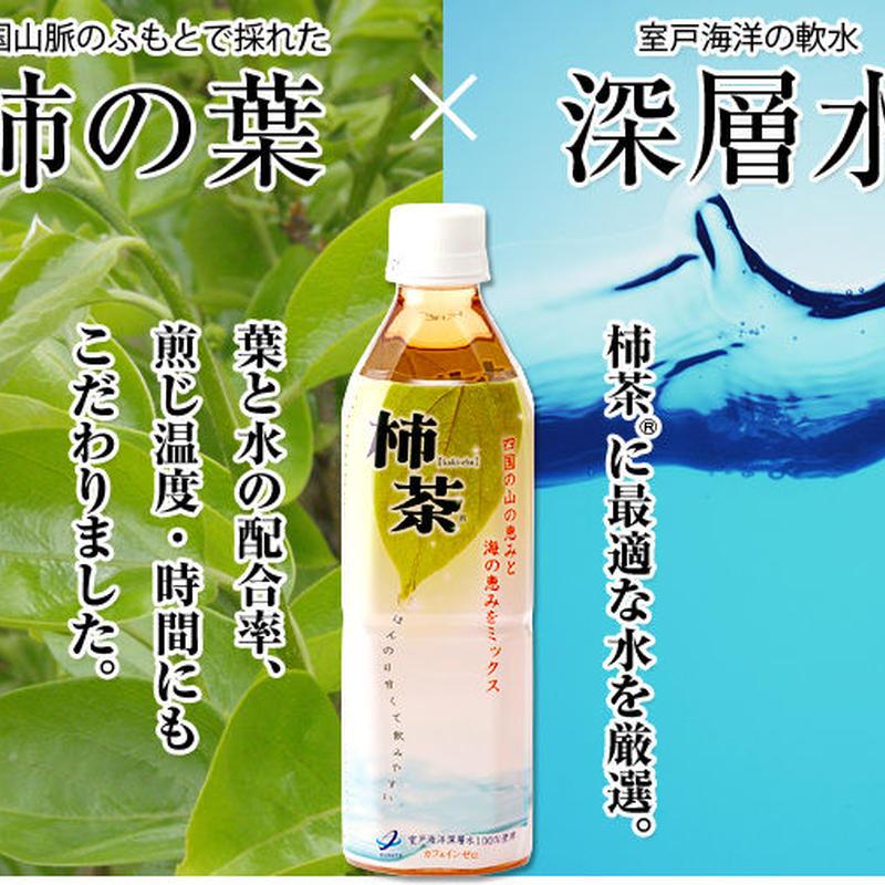 「柿茶」ペットボトル (500ml×24本)