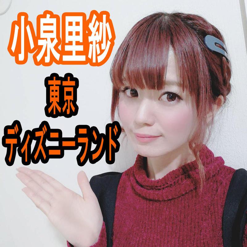 小泉里紗と東京ディズニーランド満喫チケット