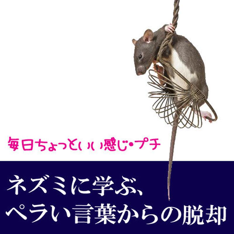ネズミに学ぶ、ペラい言葉からの脱却