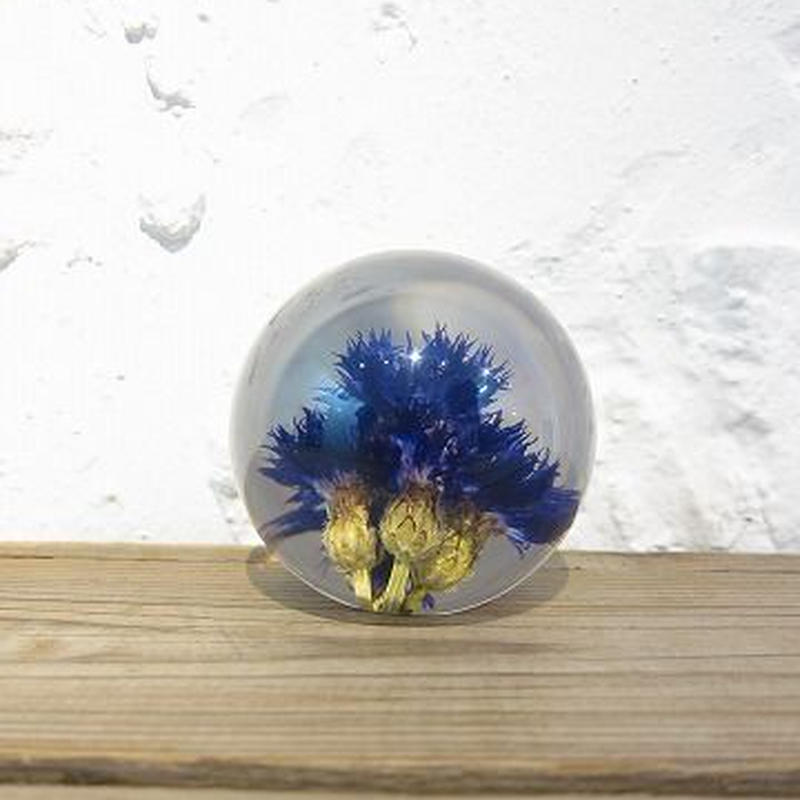 Hafod Grange / ハフォド・グレンジ / Paper weight / Cornflower