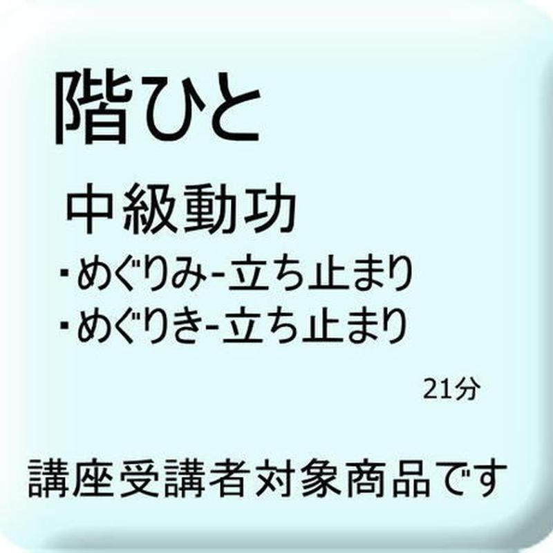 階ひと 中級動功(めぐりみ・めぐりき-立ち止まり)