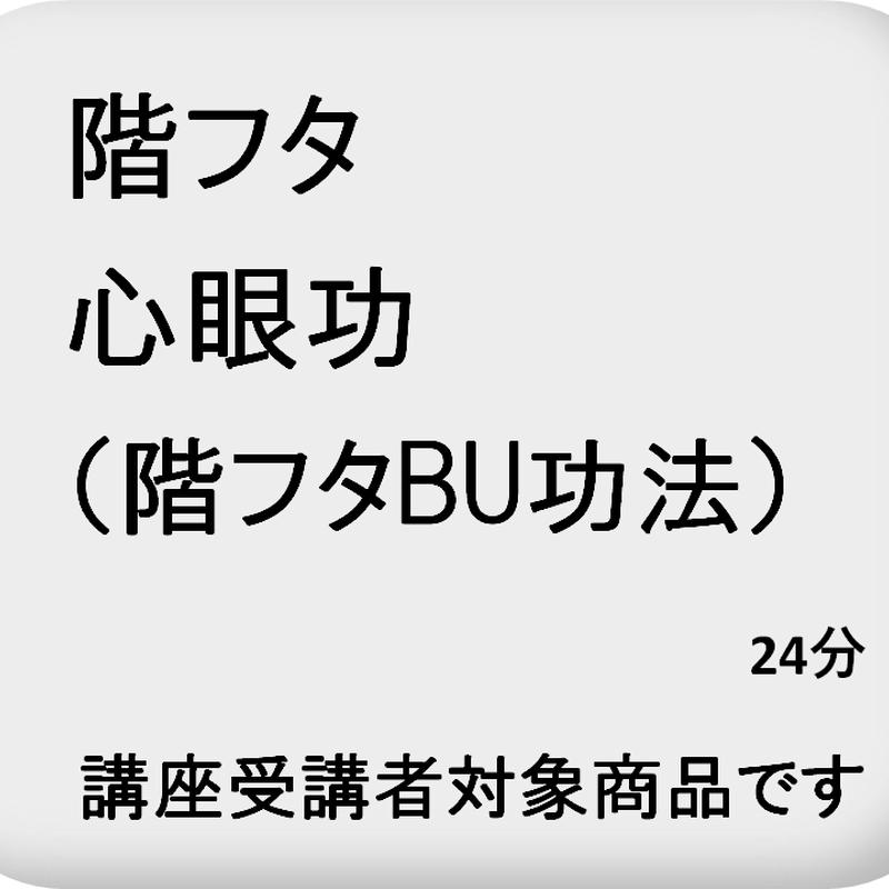 心眼功(階フタ観訣)
