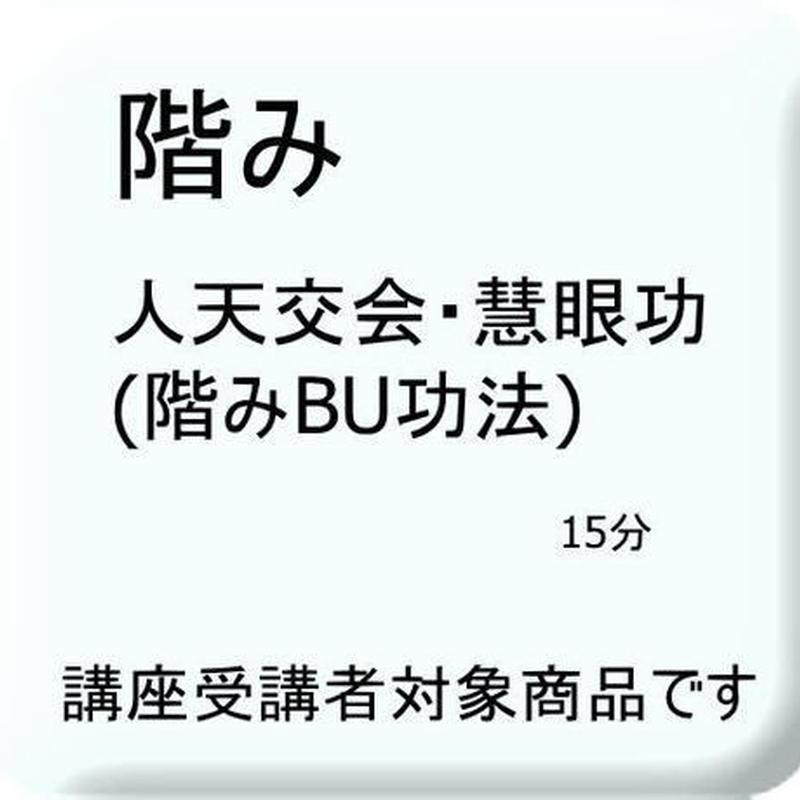 人天交会・慧眼功(階み観訣)